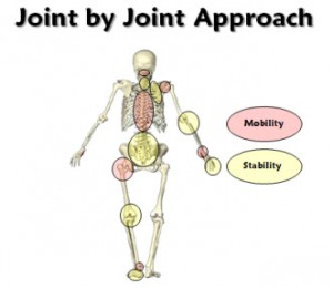 Joint-by-Joint-Theory